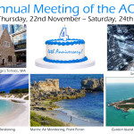Announcement of the Annual Meeting