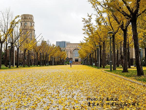 2Main building-Jiangwan campus_600